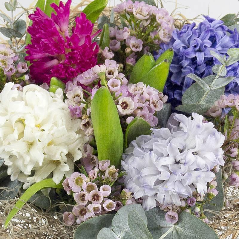 La Jacinthe : Parfum D'Hiver - Le Jardin Des Fleurs destiné Le Jardin Des Fleurs