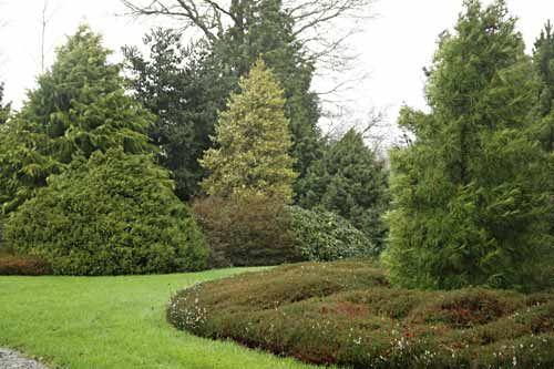 Le Jardin Botanique Des Montagnes Noires - Arrosoirs Et destiné Arrosoirs Et Sécateurs