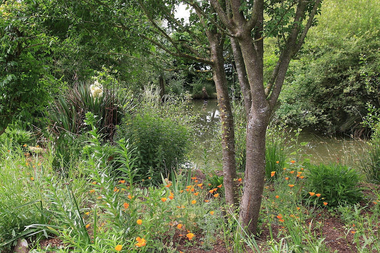 Le Jardin D'elisée À Vernais (18) - Arrosoirs Et Sécateurs encequiconcerne Arrosoirs Et Sécateurs