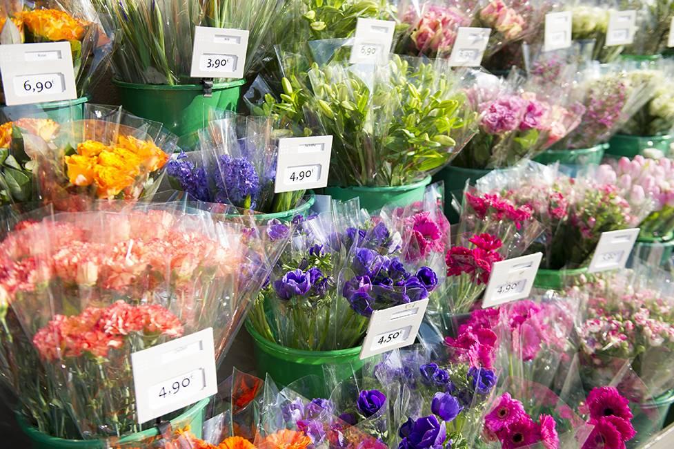 Le Jardin Des Fleurs Élu Meilleure Chaîne De Magasins De L intérieur Le Jardin Des Fleurs