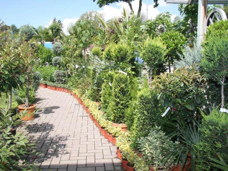 Le Point Vert - Eichinger : Décoration Hochstatt 68720 à Point Vert Le Jardin