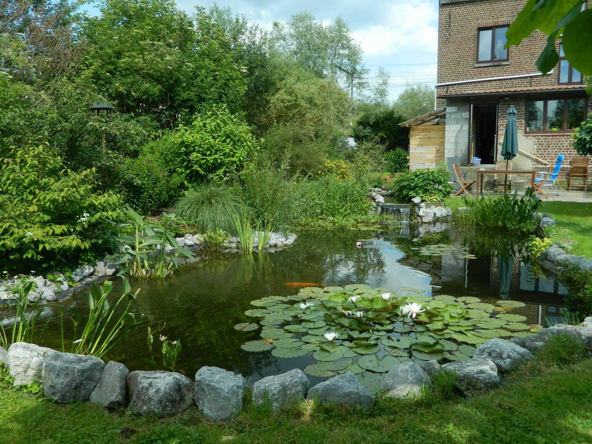 Les 15 Plus Beaux Bassins Découverts Lors Du Concours ! - Aquiflor - Jardinerie Aquatique serapportantà Bassin De Jardin