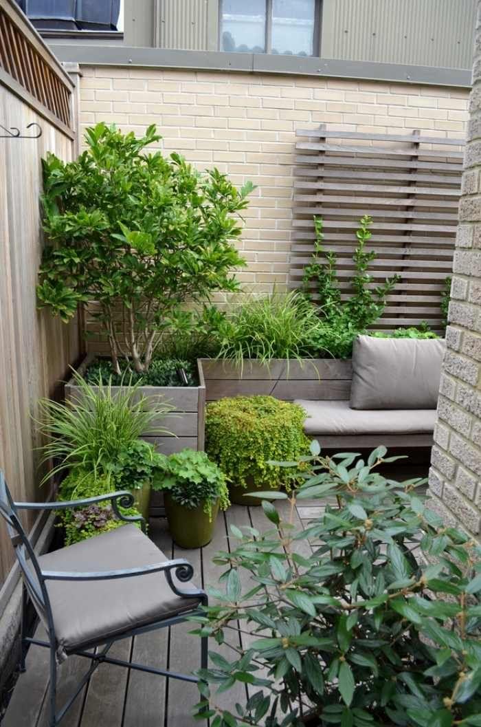 Petit Jardin En Ville: 22 Photos Et Conseil Pratiques Pour Vous! | Aménager Petit Jardin, Petits destiné Un Jardin En Ville