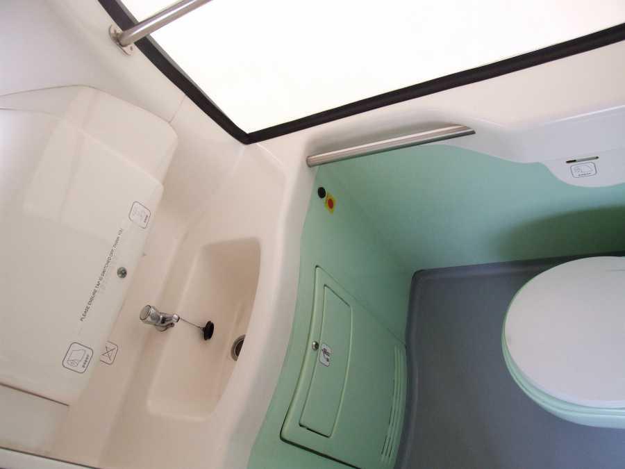 2013 Caetano Levante Toilet Web 1 | Moseley Distributors pour Toilette Lavante