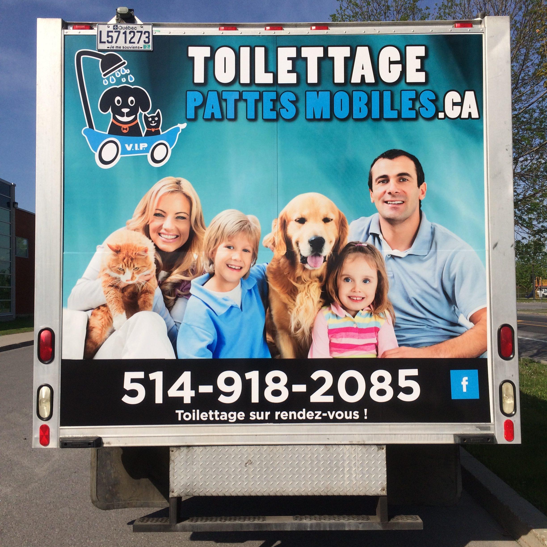 Camion - Toilettage Chiens & Chats | Toilettage Pattes Mobiles dedans Toiletteuse A Domicile