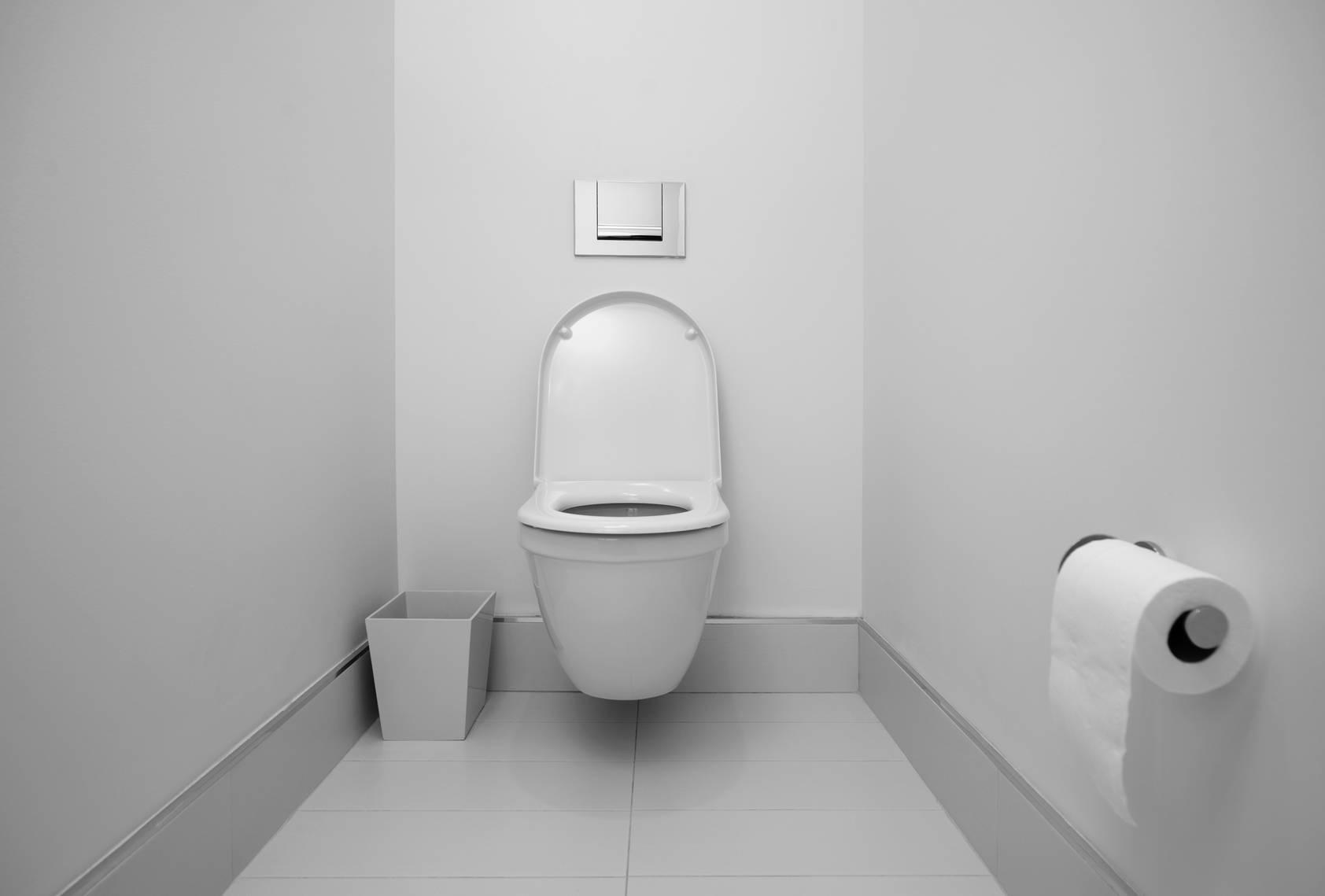 Comment Réparer Des Toilettes ? – Blog Decoration Maison dedans Toilette Seche Interieur Maison