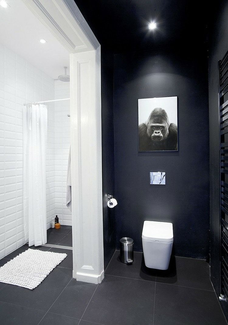 Couleur Salle De Bains – Idées Sur Le Carrelage Et La serapportantà Toilettes Noires