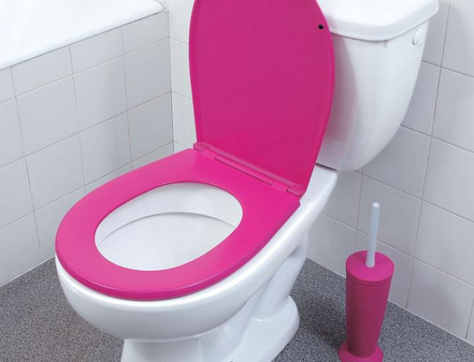 Enlever Le Tartre Des W.-C. serapportantà Tartre Toilette