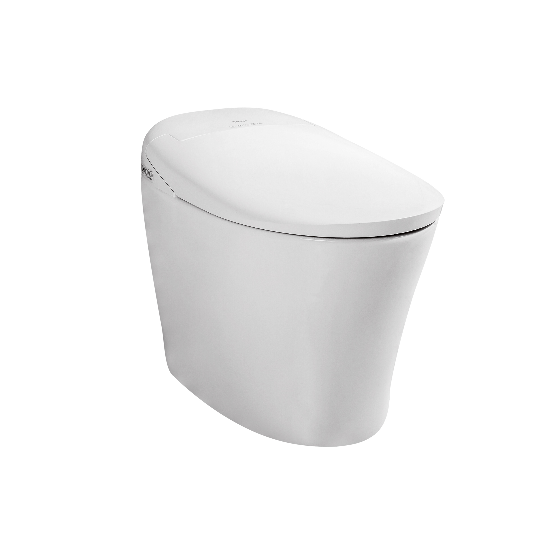Grossiste Toilet Japonaise-Acheter Les Meilleurs Toilet dedans Toilette Japonaise Prix