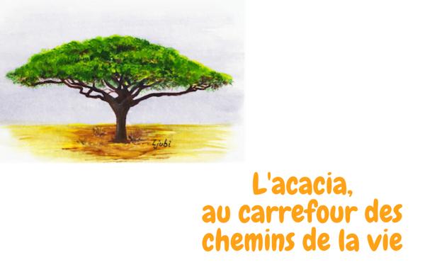 L'acacia Au Carrefour Des Chemins De La Vie - Opus Dei intérieur Carrefour Sept Chemins