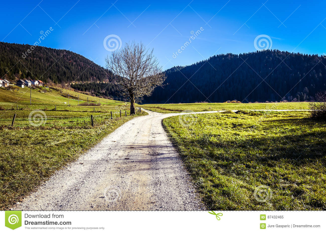 Route Et Champs De Campagne Avec Le Carrefour Et Un Arbre tout Carrefour 7 Chemins