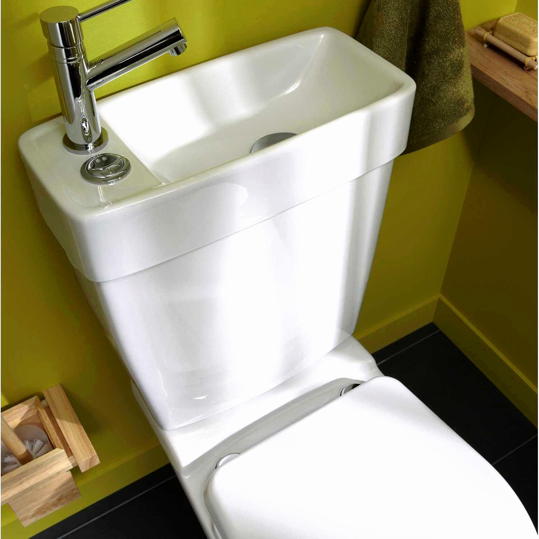 Sanibroyeur Sfa Leroy Merlin Luxe Kit Douchette Wc Leroy à Toilettes Sanibroyeur
