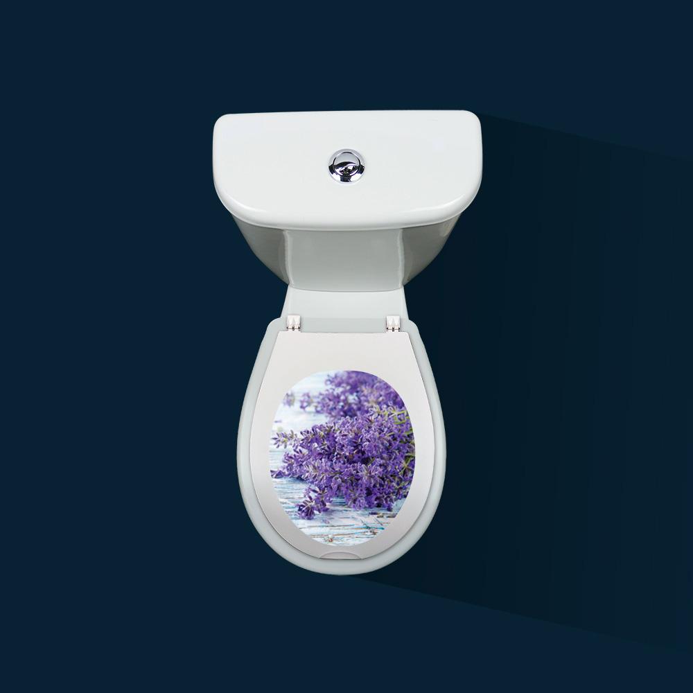 Lunette Des Toilettes Leroy Merlin Archives Agencecormierdelauniere Com Agencecormierdelauniere Com