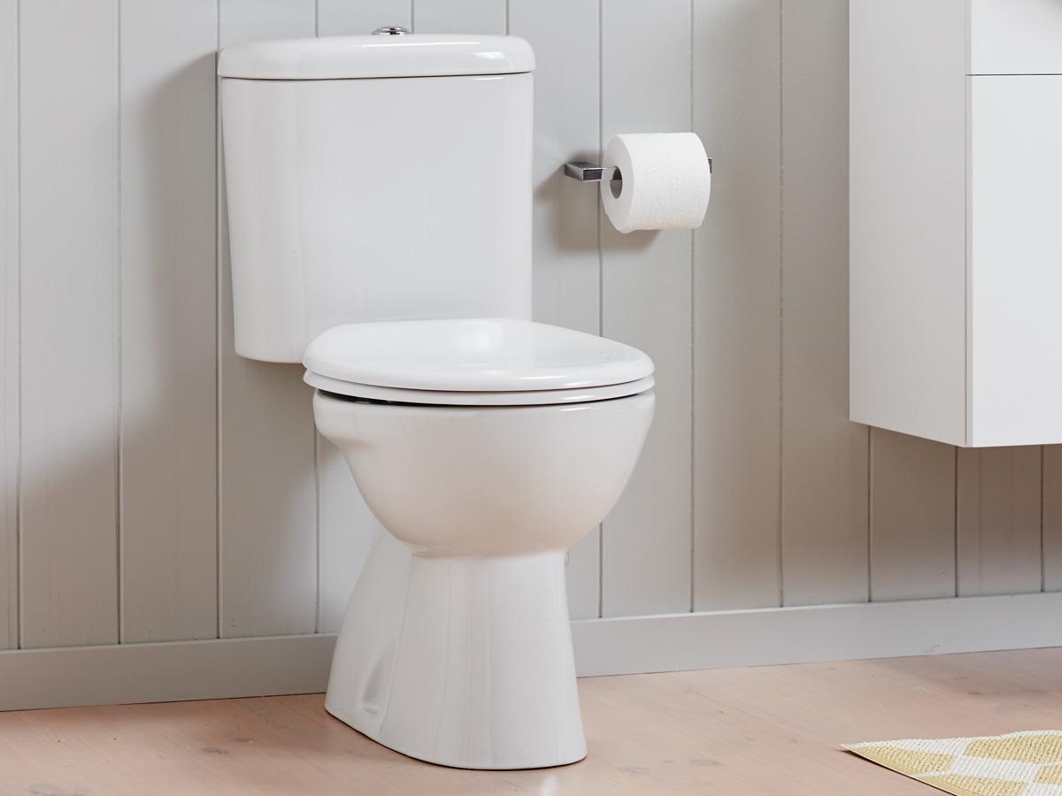 Top 5 Facts: Toilets   How It Works serapportantà Toilette Porcher