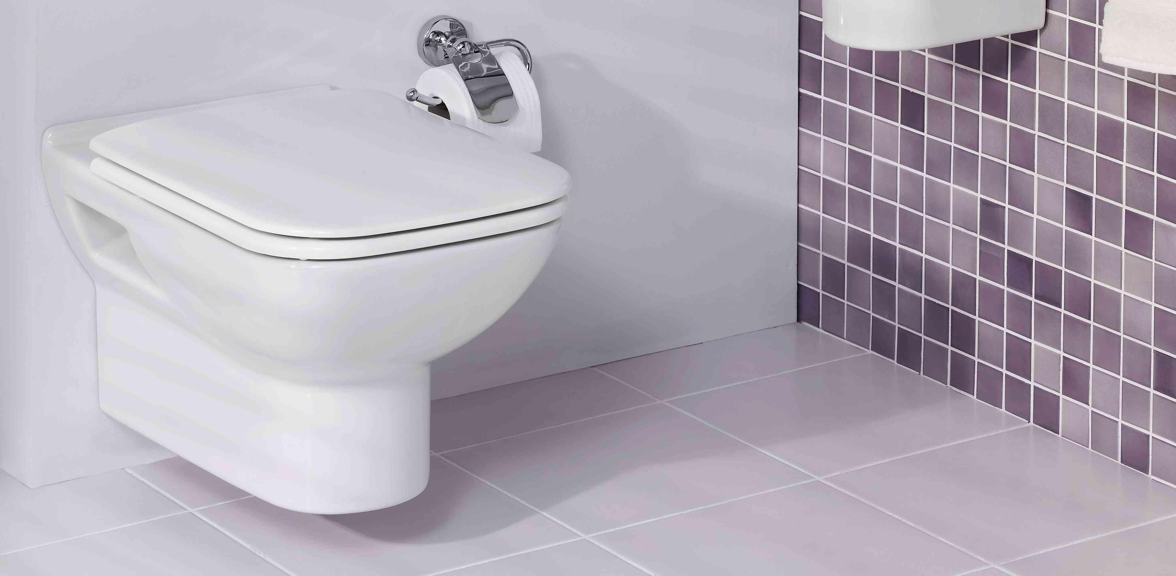 Wc Qui Déborde, Toilettes Bouchées, Problème D'évacuation concernant Toilettes Bouchées