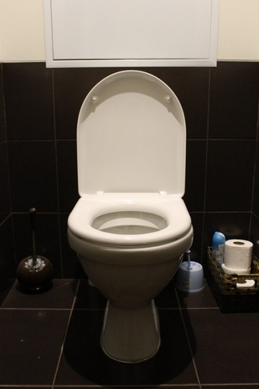 What To Do If There Is No Water In Toilet Bowl - See Jane serapportantà Toilettes Bouchés