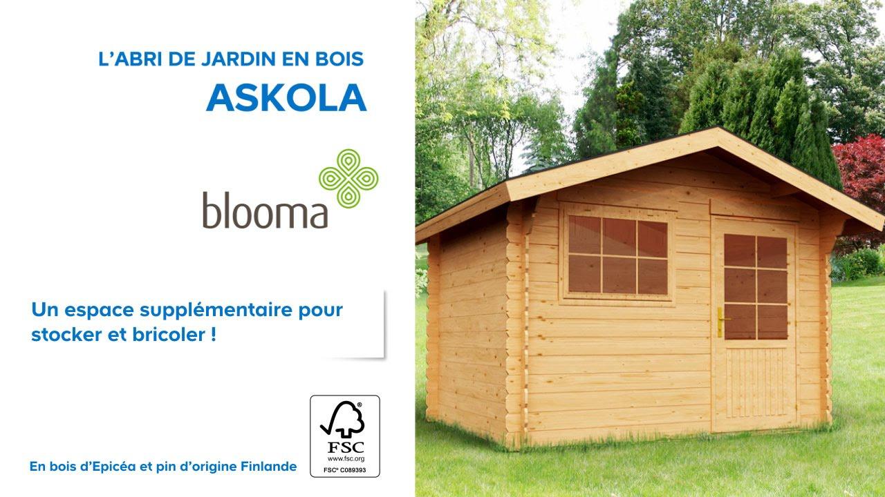 Abri De Jardin En Bois Askola Blooma (610707) Castorama tout Abris De Jardin Bois 10M2