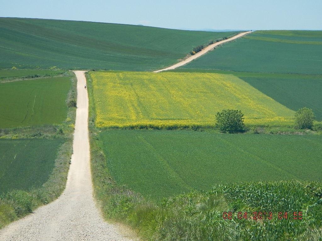 Chemins De Saint-Jacques-De-Compostelle serapportantà Randonnée Chemin De Compostelle