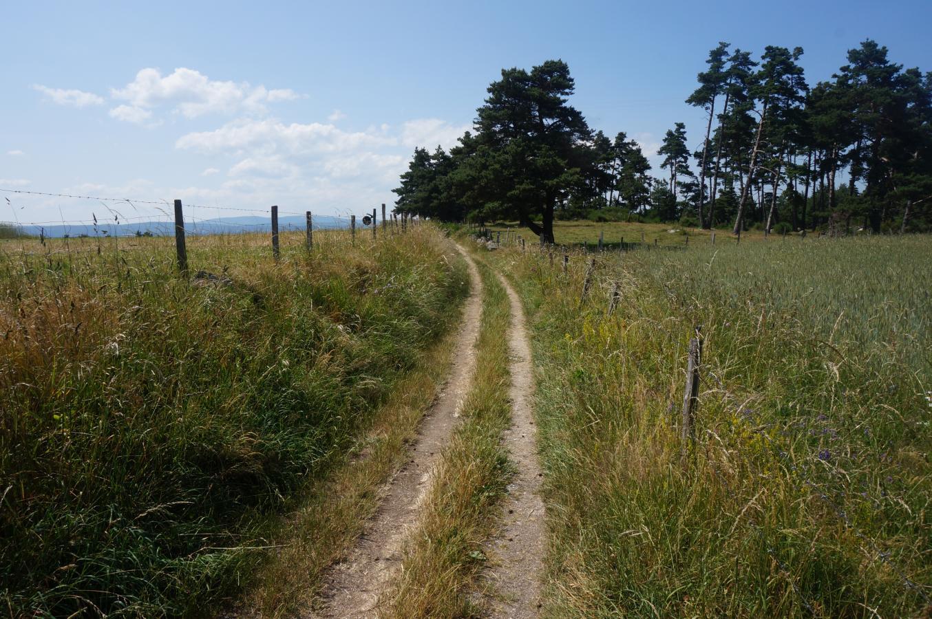 Le Chemin De Saint Jacques De Compostelle, Du Puy En Velay concernant Randonnée Chemin De Compostelle
