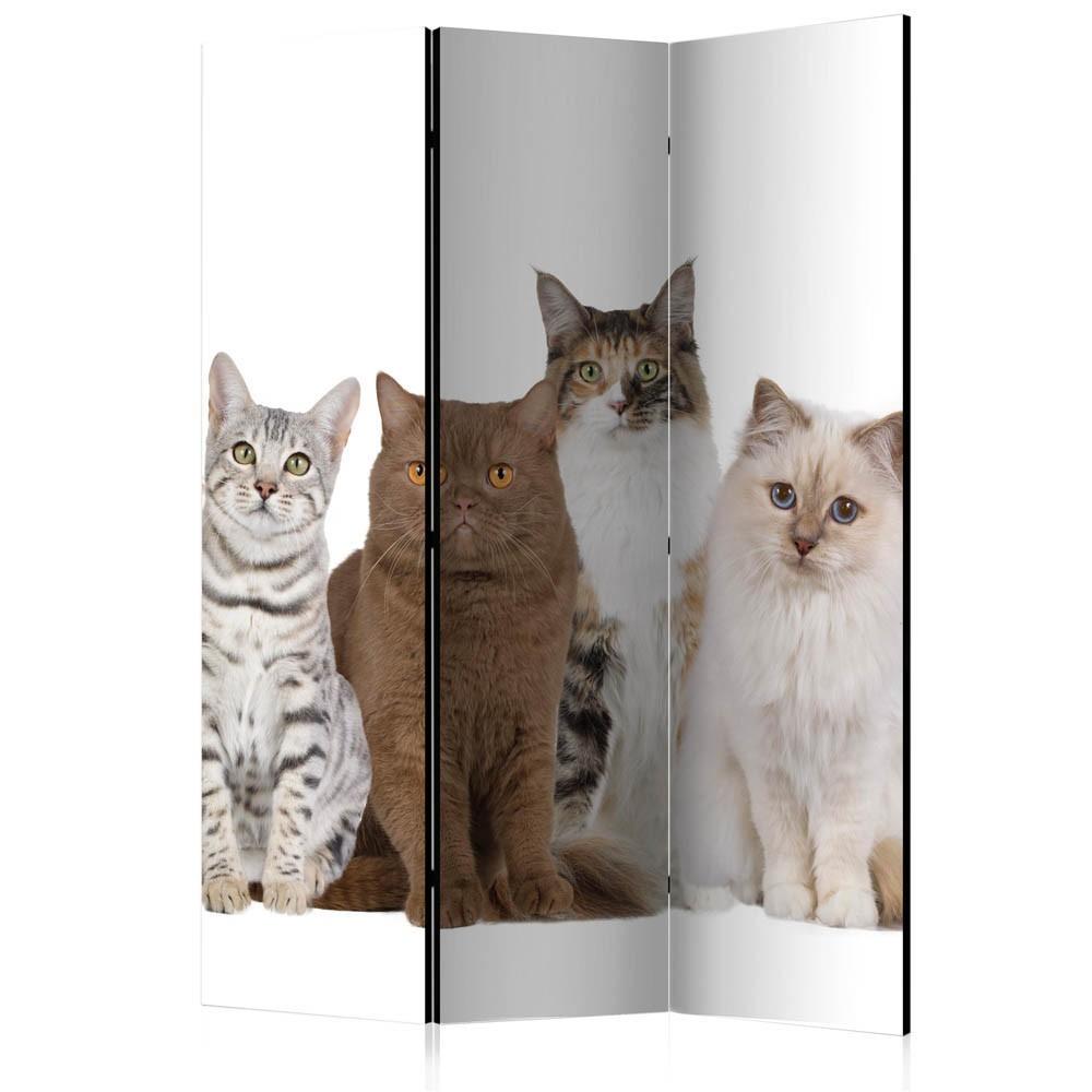 Paravent Imprimé Chats Assis 3 Volets dedans Hamac Chat Fenêtre Gifi
